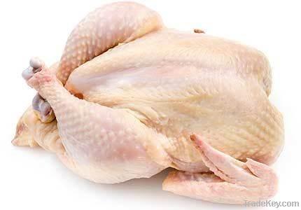 chicken frozen imports