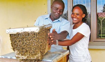 beekeeping and honey 6