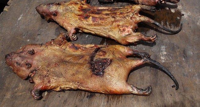 Top 8 Meats in Africa -- Wild Game -- Smallstarter Africa