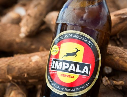 How cassava beer in Mozambique has transformed a poor man's crop into a cash crop