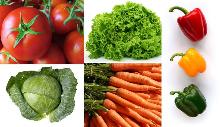 Vegetable farming - types of vegetables