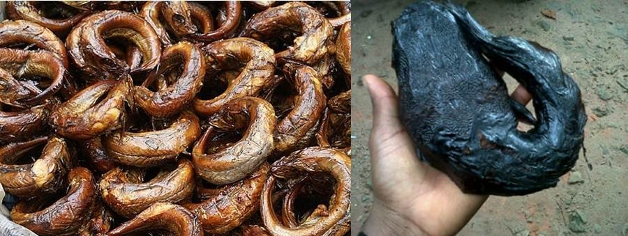Dried and Smoked Fish Export - How to serve the demand of Africans