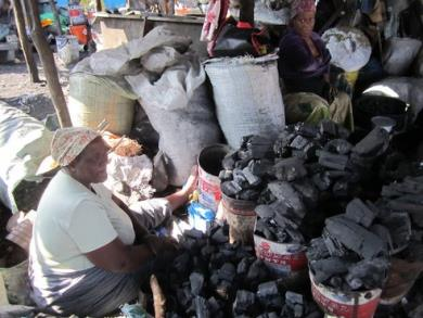 1.charcoal business in africa 6