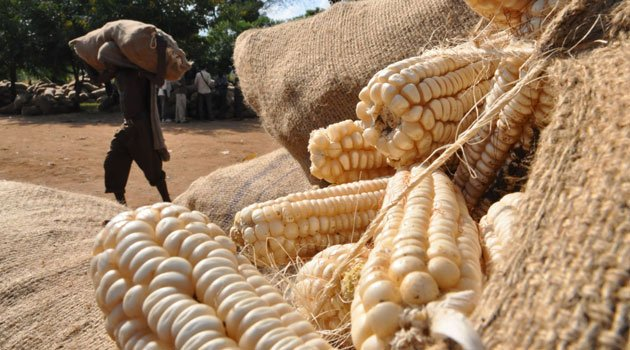 1. 1 Maize farming and production in Africa 3
