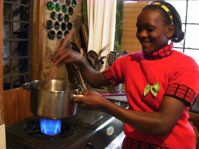 1. How to start a biogas production business in africa 4