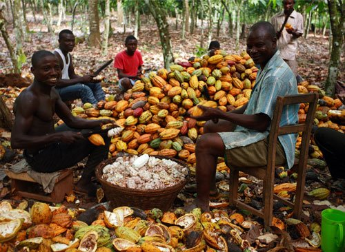 1. Cocoa businesss and the chocolate opportunity 4