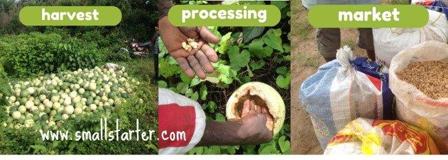 1.1.1 - 4 years a farmer 3