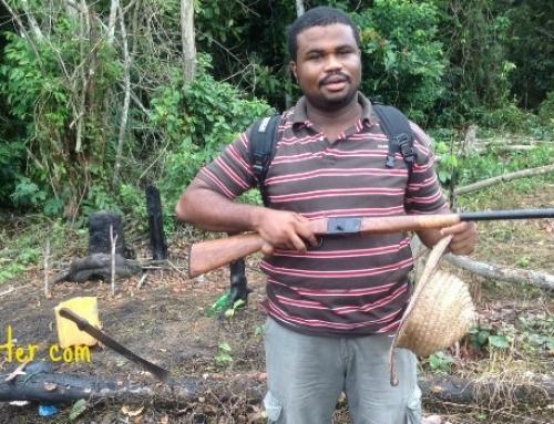 4 Years A Farmer – My Insights and Experience as An Urban Farmer in Lagos, Nigeria