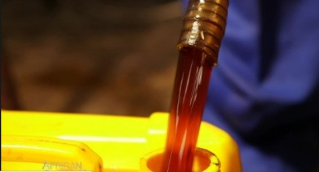 Biodiesel – How To Start A Business That Converts Used Cooking