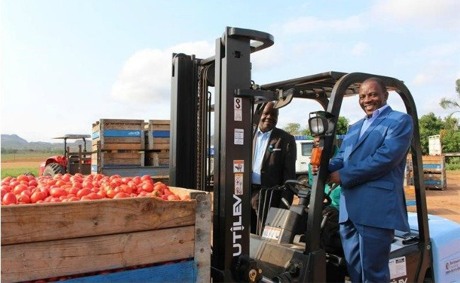 Tomato Business in Africa - Dr Ntuseni Nesane