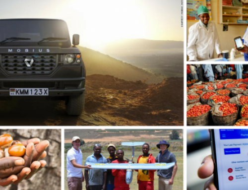 11 Business Opportunities in Africa That Made More Millionaires in 2018