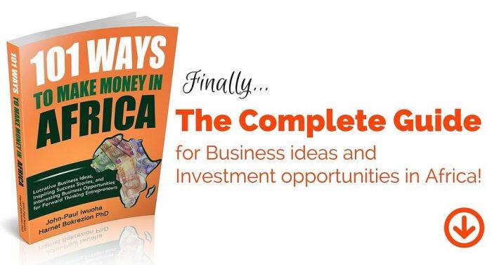 101 Ways To Make Money in Africa_Book_banner_ad