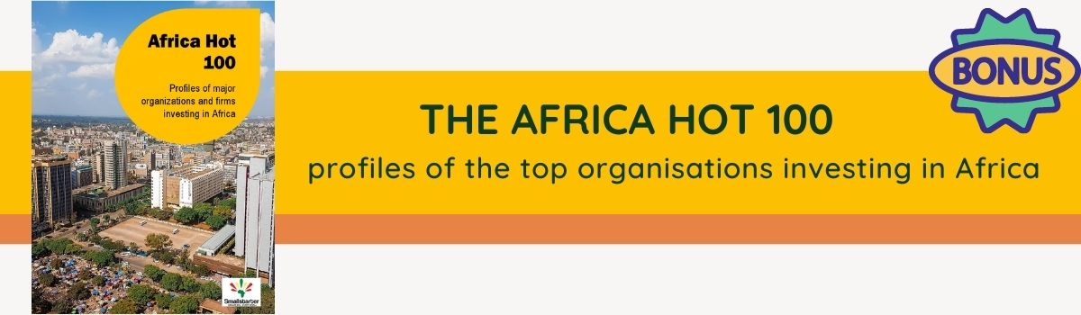 11 Big Business Opportunities in Africa 2021 -- article banner -- africa hot 100 catalog